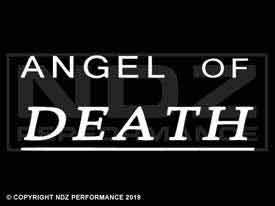 037 - Angel of Death Text