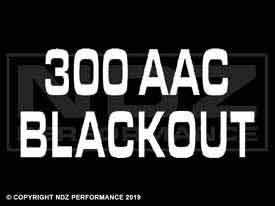 1382 - 300 Aac Blackout