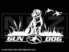 212 - Gun Dog Ducks
