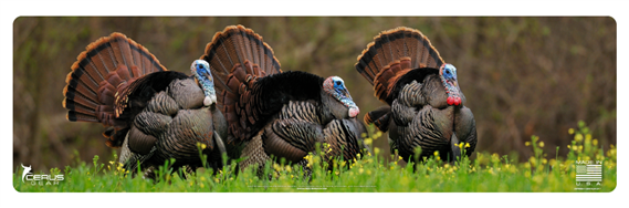 Cerus Gear Wildlife Turkey